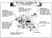 TheWestAustralianFly.jpg